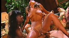 Two slutty ebony babes are hungry and will eat whatever is put in front of them