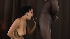Short haired babe gives sweet and slow head to a big black cock
