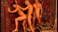 Three gay hunks suck each other's pricks and pound each other's asses