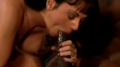 Curvaceous brunette welcomes a huge black cock deep in her anal hole