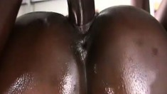 Skilled young Barbiee gets into a passionate fuck fest with Byron Long