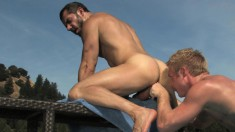 Sunbathing stallions take turns banging each other's asses by the pool